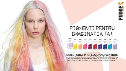 Pigmenti pentru imaginatia ta!