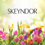 Skeyndor iti propune kiturile luxury